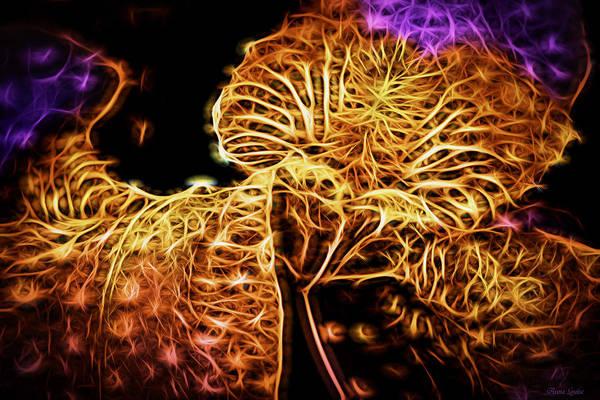 Photograph - Iris Neon Glow 1 by Anna Louise