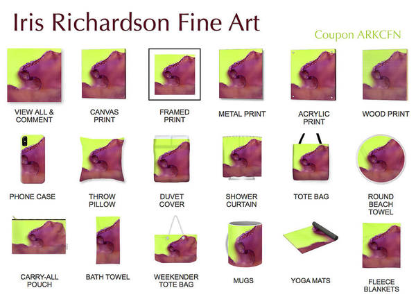 Mfa Wall Art - Photograph - Iris Richardson Fine Art America Product Line by Iris Richardson