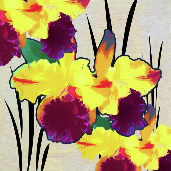Wild Poppies Digital Art - Iris Shadow by Linda Dunn