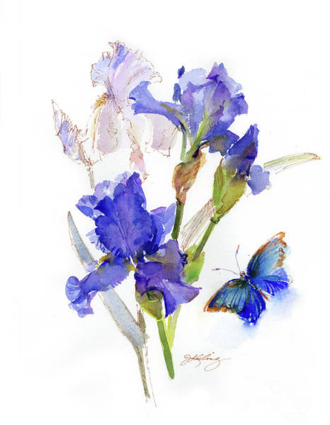 Wall Art - Painting - Iris With Blue Butterfly by John Keeling