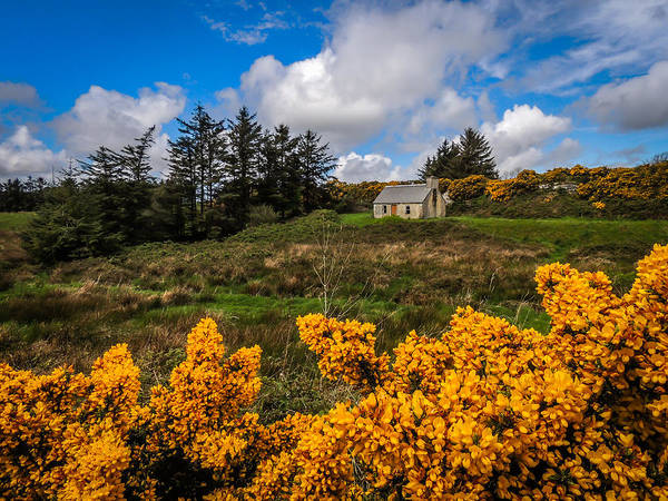Photograph - Irish Cottage In Spring by James Truett