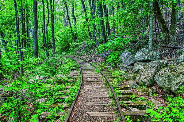 Photograph - Irish Creek Railway by Dale R Carlson