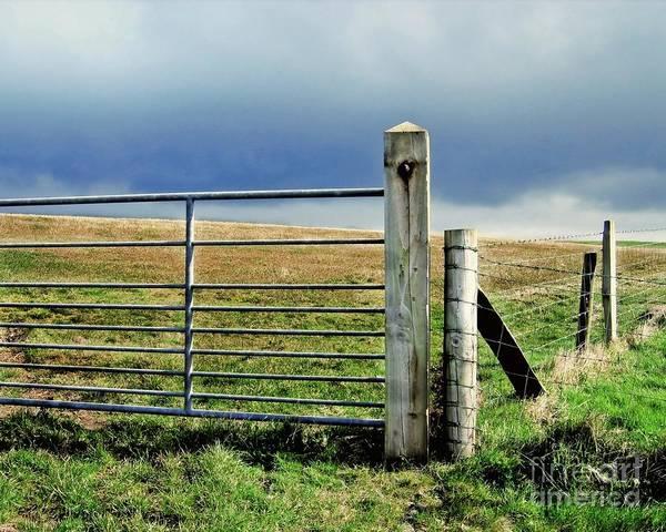 Photograph - Irish Field by Patricia Strand