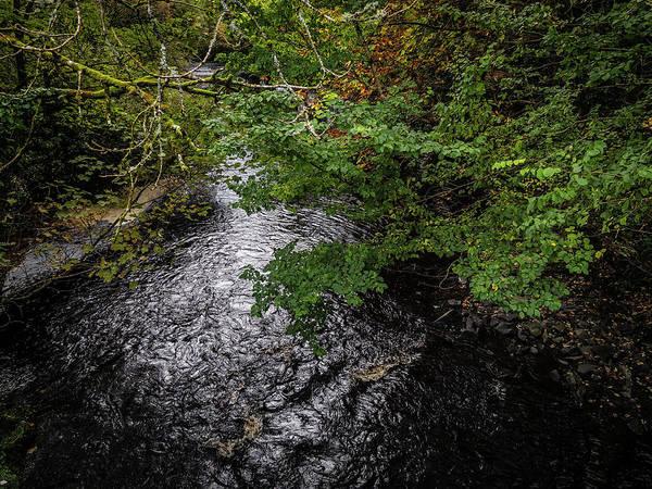 Photograph - Irish Stream In Autumn by James Truett