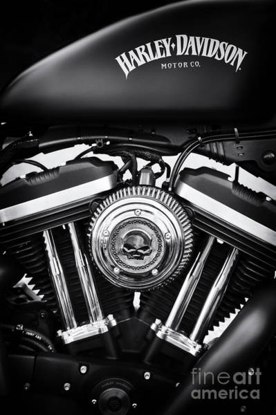 Harley Davidson Black And White Wall Art - Photograph - Iron 883 by Tim Gainey