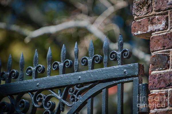 Photograph - Iron Fleur-de-lis by Dale Powell