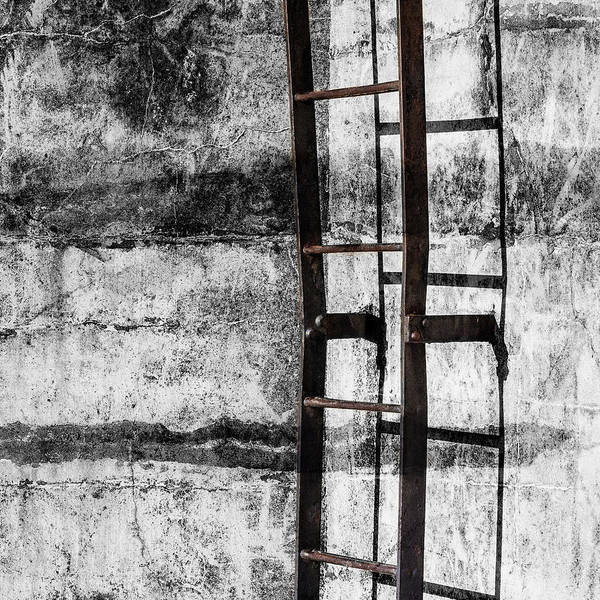 Cement Wall Art - Mixed Media - Iron Ladder by Carol Leigh