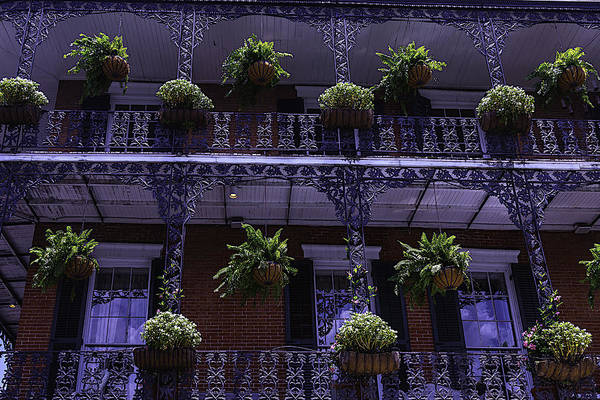 Nola Photograph - Iron Railings And Plants by Garry Gay