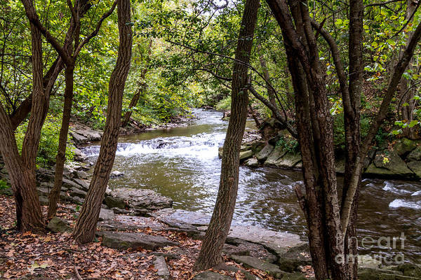 Photograph - Irondequoit Bends by William Norton