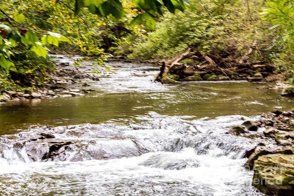 Photograph - Ironedquoit Rapids by William Norton