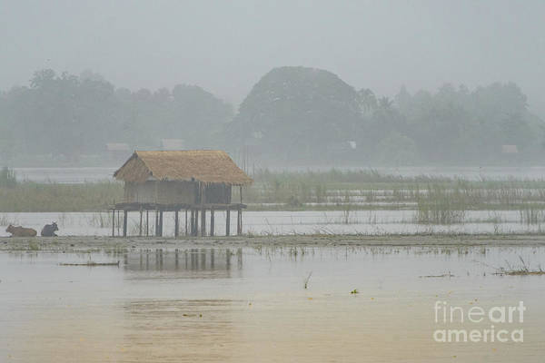 Photograph - Irrawaddy In Flood by Werner Padarin