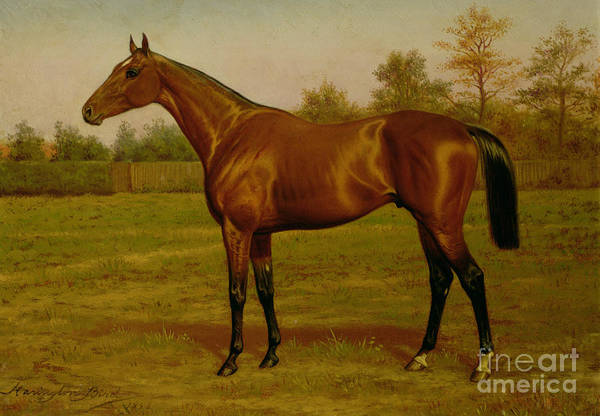 Isinglass, Triple Crown, 1893 Art Print