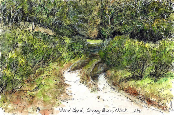 New South Wales Drawing - Island Bend by Anne Huth