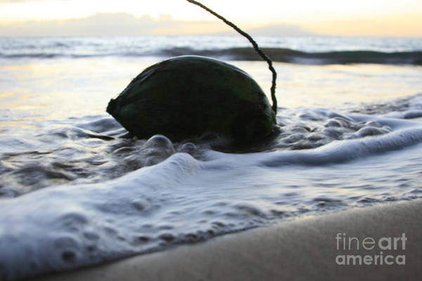 Oneness Photograph - Island Dreams by Sharon Mau