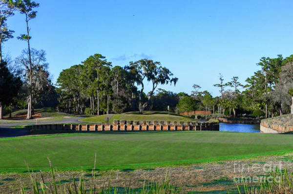 Photograph - Island Green Tpc Sawgrass by Randy J Heath
