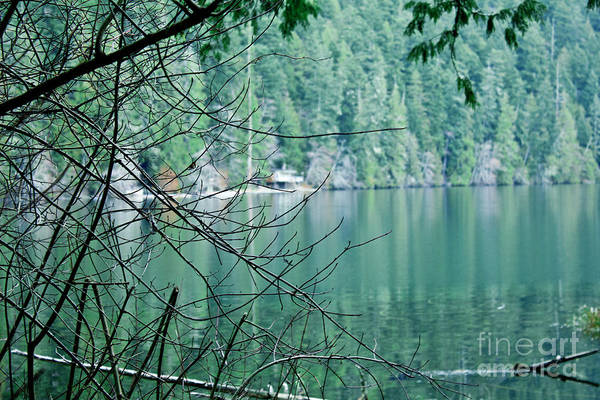 Photograph - Island Lake by Donna L Munro