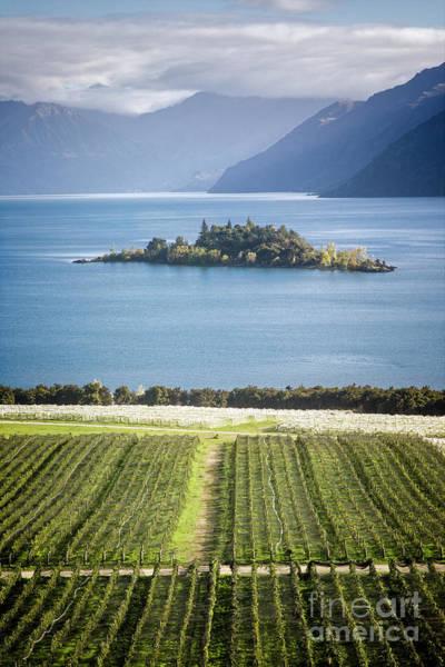 Photograph - Island Lake by Scott Kemper