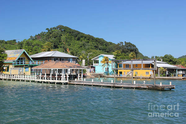 Photograph - Island Life On Roatan by Wilko Van de Kamp