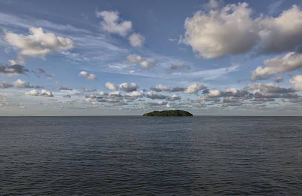 Photograph - Island Mangrove  by Jon Glaser