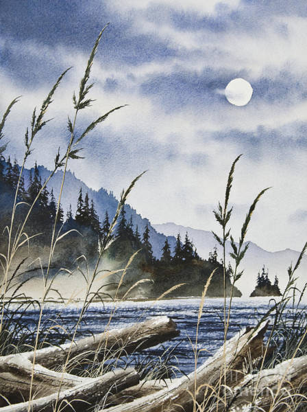 Driftwood Painting - Island Moon by James Williamson