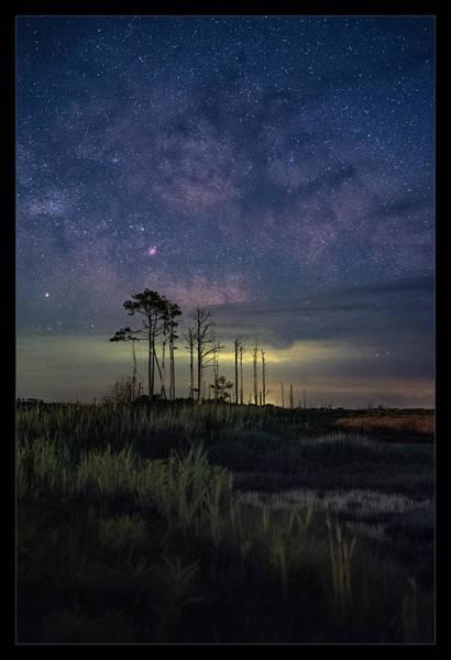 Wall Art - Photograph -  Island Stars by Robert Fawcett