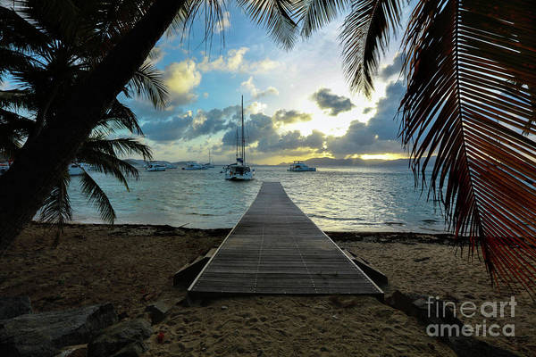 Wall Art - Photograph - Island Sunset by Jon Neidert