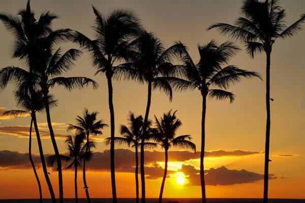 Photograph - Island Sunset by Pamela Walton