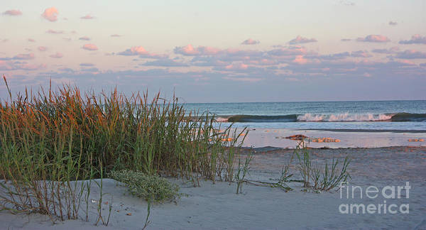 Photograph - Isle Of Palms Sunset by Kevin McCarthy