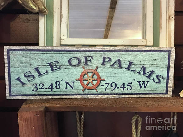 Photograph - Isle Of Palms by Dale Powell