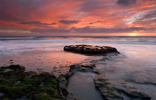 Kelp Photograph - Isle Of The Setting Sun by Mike  Dawson