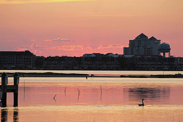 Photograph - Isle Of Wight Dawn by Robert Banach
