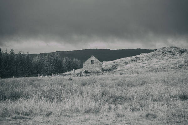 Farmyard Photograph - Isolated Hosue by Martin Newman