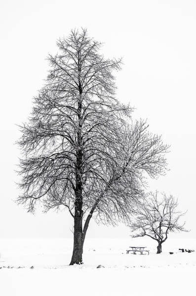 Photograph - Isolation by Stewart Helberg