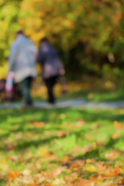 Elder Care Photograph - It Is Autumn... by Svetlana Iso