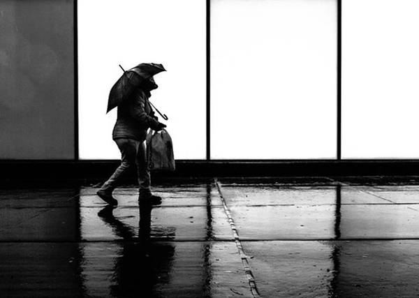 Wall Art - Photograph - It Was A Rainy Day When...... #rainday by Brian Carson