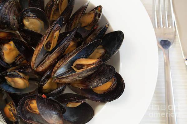 Souse Photograph - Italian Cuisine. Mussels by Ekaterina Molchanova