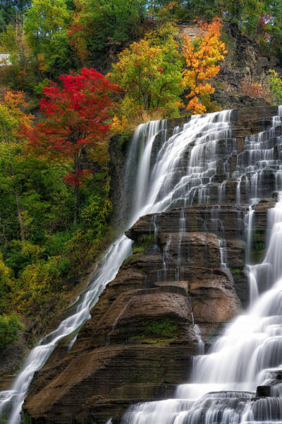 Photograph - Ithaca Falls by Mark Papke