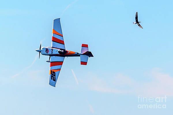 It's A Bird And A Plane, Red Bull Air Show, Rovinj, Croatia Art Print