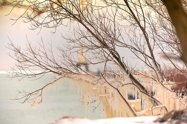 Photograph - It's February by James Meyer