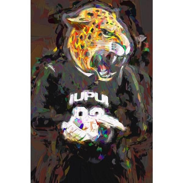 Athletes Wall Art - Photograph - @iupui #iupuijaguars #iupui #jaguars by David Haskett II