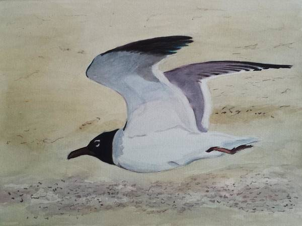 Painting - I've Got Wings by Vera Smith