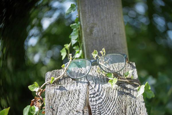 Photograph - I've Lost My Specs by Raelene Goddard