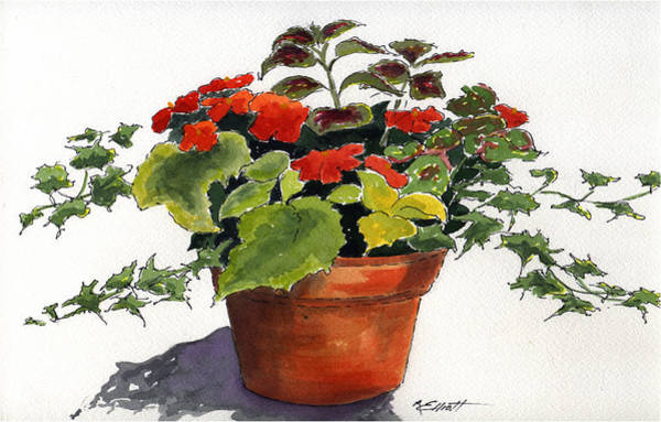 Potted Plant Painting - Ivy League by Marsha Elliott