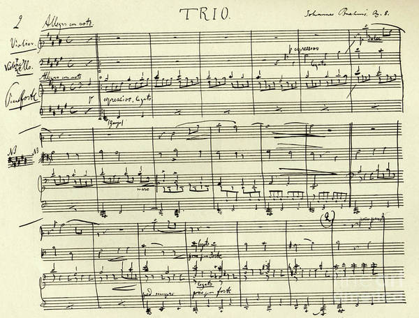 Trio Drawing - J Trio In Bb Major by Johannes Brahms