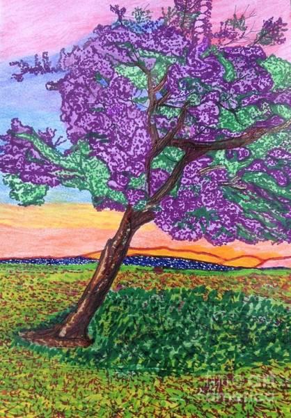 Blooming Tree Drawing - Jacaranda Bloom by Ishy Christine MudiArt Gallery