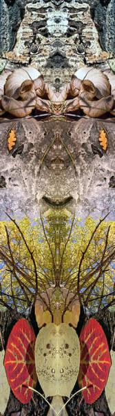 Digital Art - Jackdaws Love My Big Sphinx by Becky Titus
