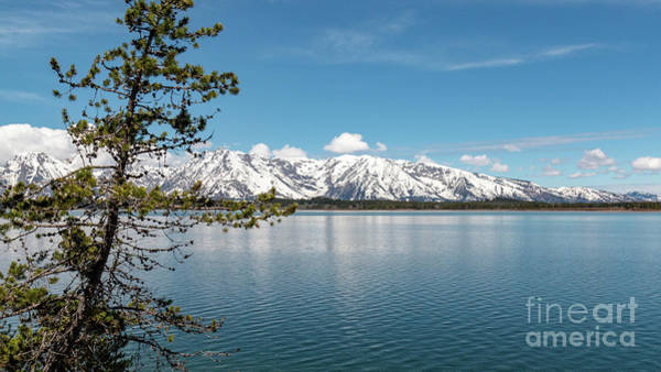 Photograph - Jackson Lake 1 by Pam  Holdsworth