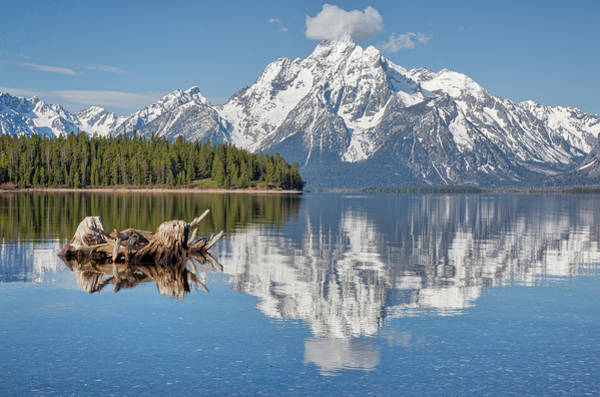 Photograph - Jackson Lake, Gtnp by Joe Paul
