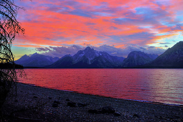 Photograph - Jackson Lake Sunset by Greg Norrell