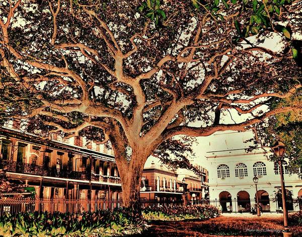 Photograph - Jackson Square, New Orleans by Coleman Mattingly